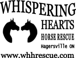 WHHR logo, rescue, horses, slaughter