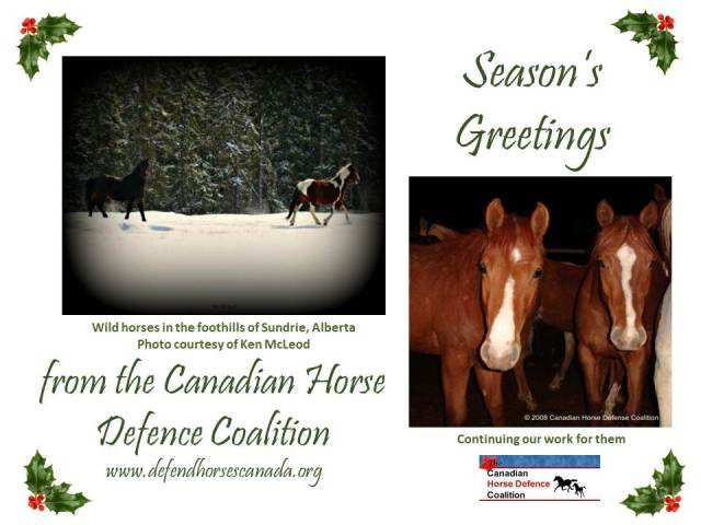 CHDC Holiday Greeting
