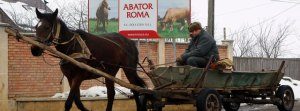 Man rides his horse-driven cart in front of Doly-Com meat plant in Roma village