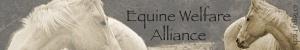 EWA Logo 2