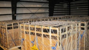 Crates containing horses in shed at Calgary Airport