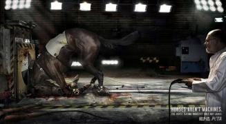 peta-horses-arent-machines