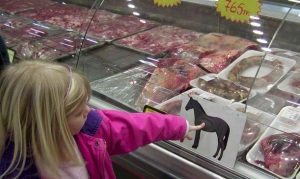 little girl pointing to horse image in butcher shop