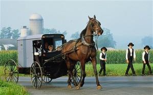 _Amish-_2106878b