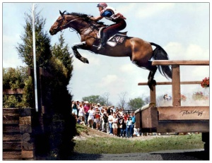 "The cross country portion of the ""triathlon"" is the most extreme equestrian sport, pushing horses and riders often beyond their physical and mental limits."