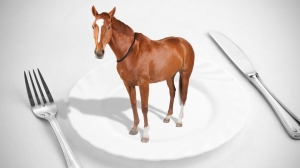 horse-on-plate