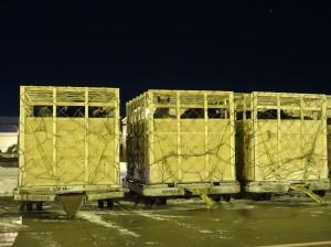 Crated horses for live shipment to Japan - Calgary 13-Jan-15 - photo supplied