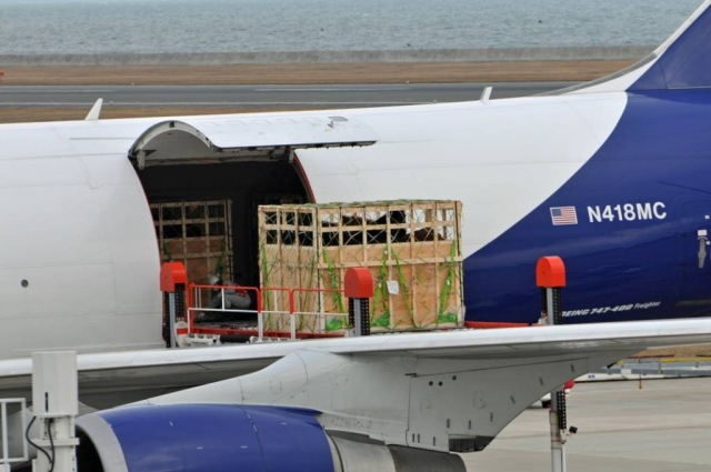 Atlas Air Boeing 747 47 UF