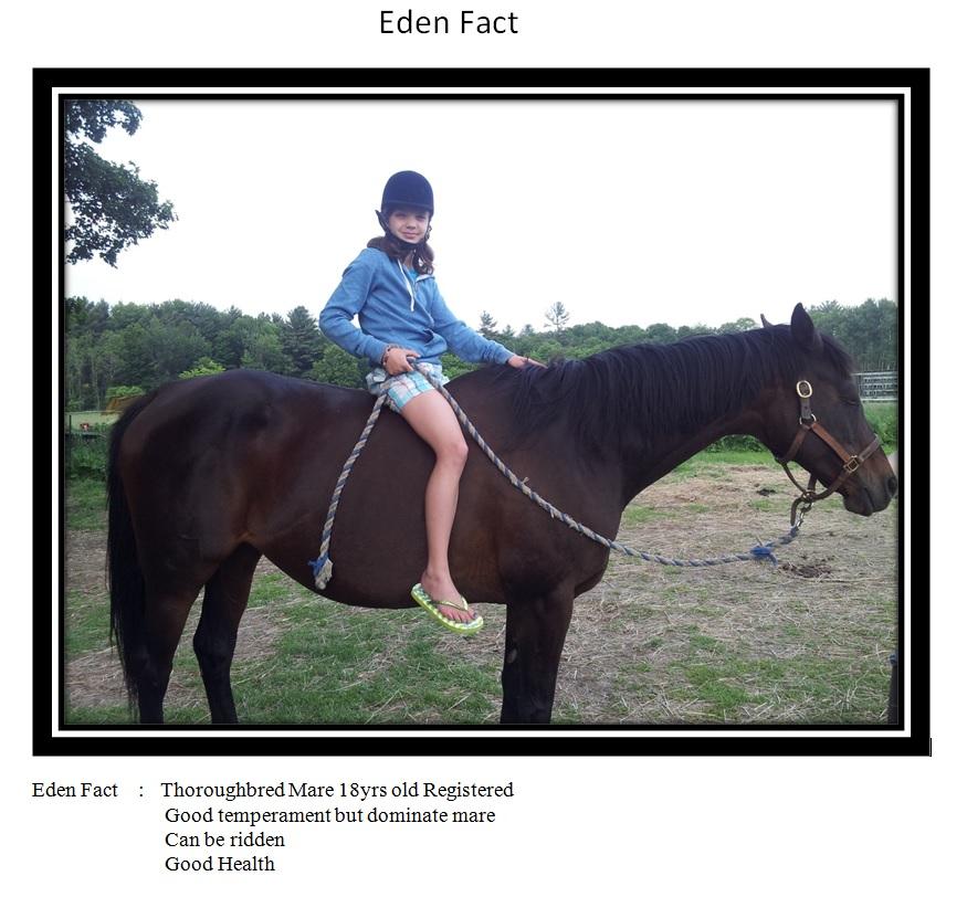 eden-fact